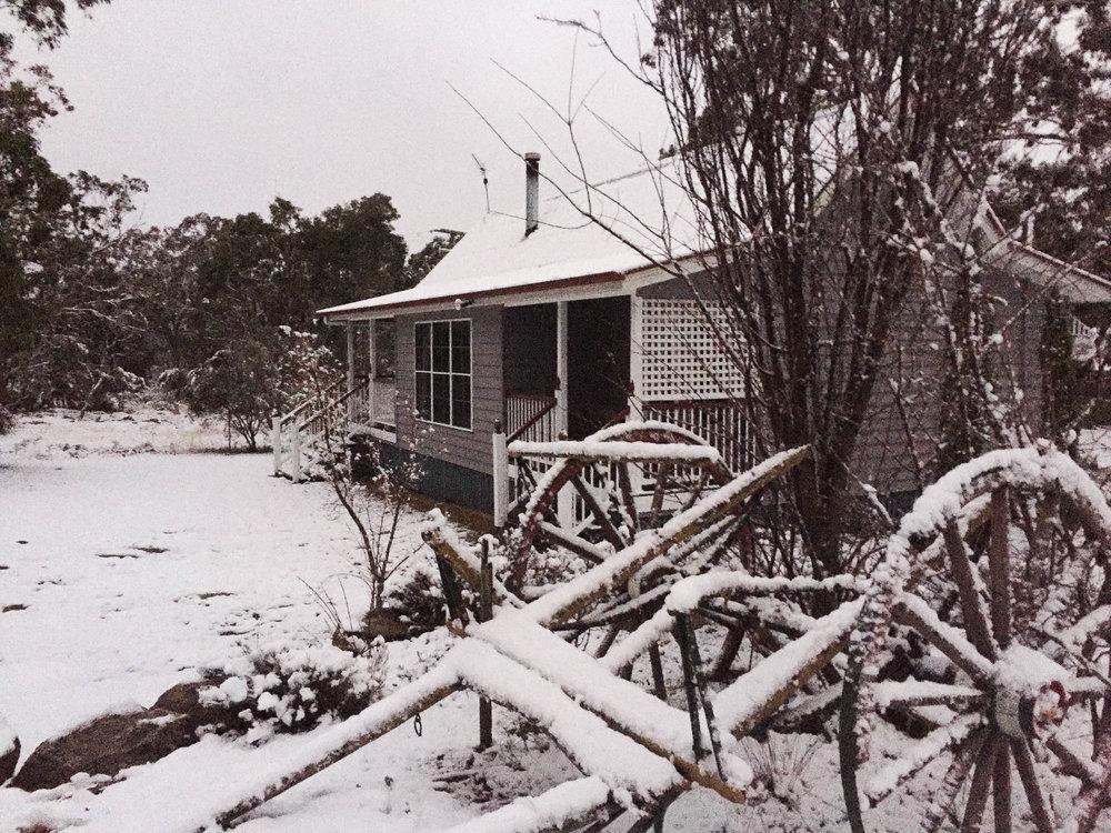 Coolibah's Snowfall