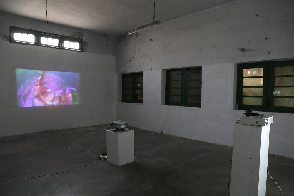 RIAO - Installation Shot 2.JPG