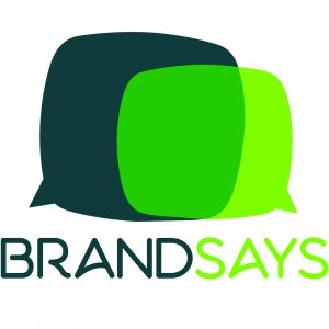 Brandsays - Brandsays是一种独特的在线安全解决方案提供商,品牌可以实时提醒其客户和合作伙伴是否在浏览一个骗局网站(假冒销售,欺诈……)。 它使品牌有能力保护自己,并加强了他们与客户之间的信任。