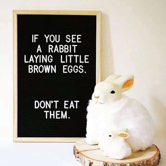🐣Puro Hair wishes you all a very happy Easter 🐣  We hope you fill your boots with chocolate & enjoy the lovely sunshine 🌞 (P.S here's a little reminder in case you forgot👀⬇️) #purohair #vegansalon #animalcrurltyfree #evohairproducts #pureology #petersfield #follymarket 🐣🌱🌿