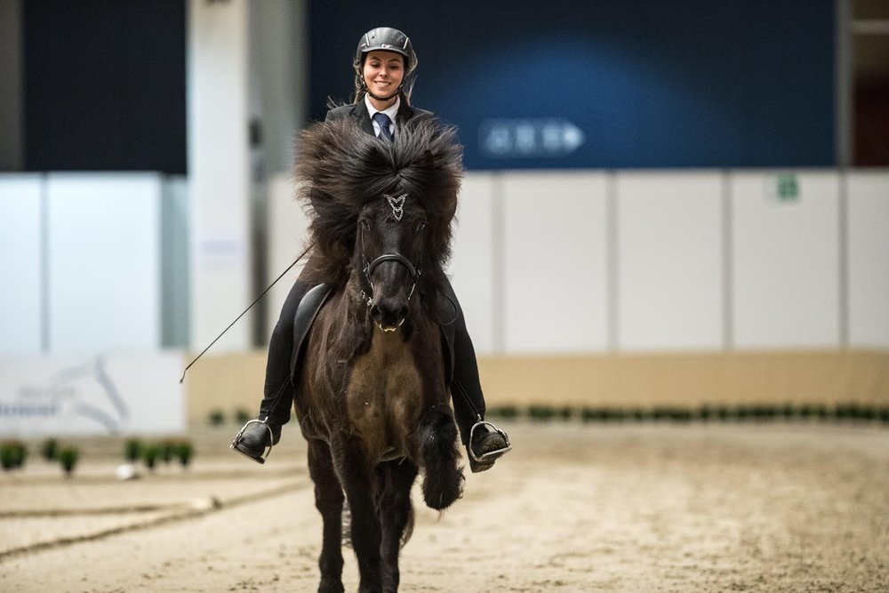 MACHINE LEARNING - With the Konekt mobile app, horsemen can see the gait spread of their horse and register training statistics continuously. The app makes it easy for riders to store data and share it with fellow riders or their coaches.