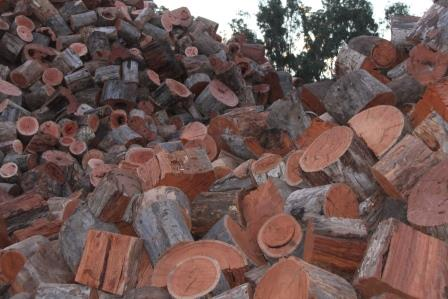 firewood_blocks_grg.JPG