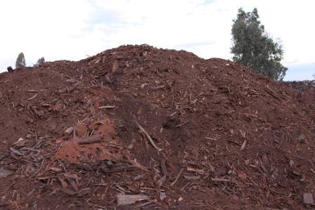 firewood_waste_grg.JPG