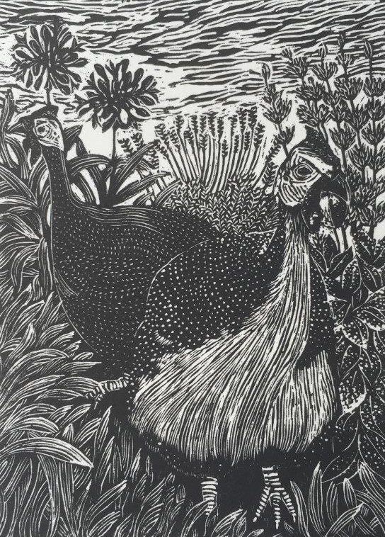 Copy of Guinea Fowl
