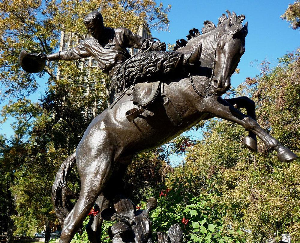 Texas-Cowboy-7.jpg