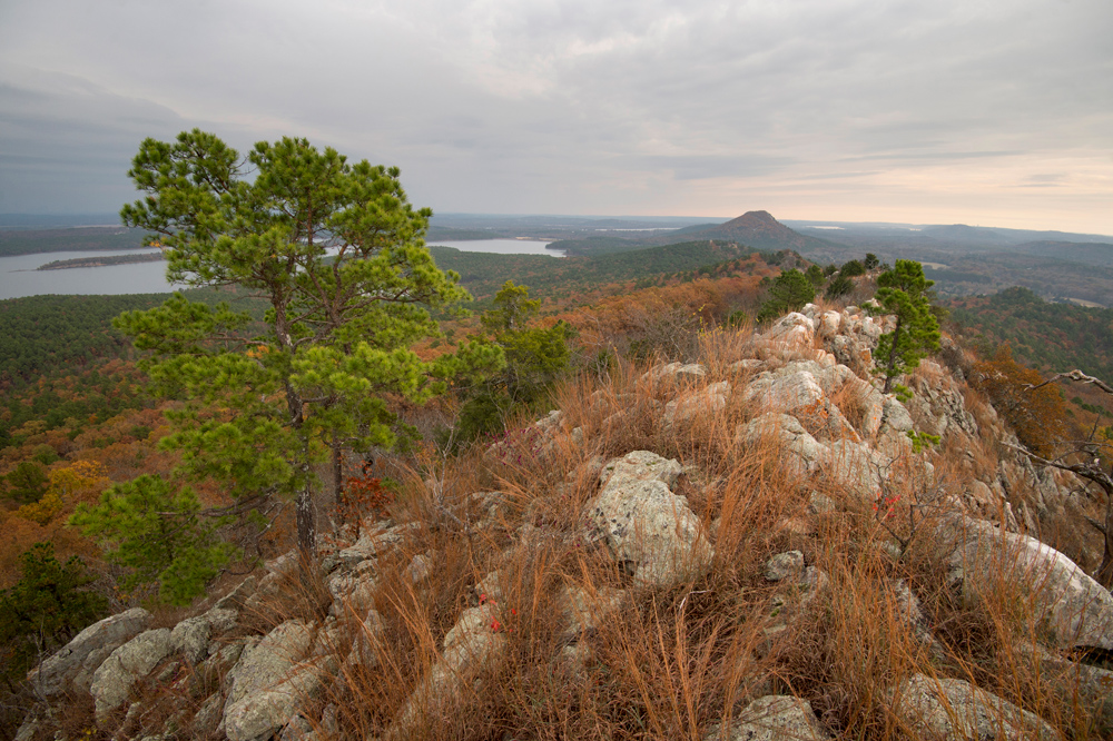 The Nature Conservancy's is building trails on its properties as part of a new strategy:  connecting people with nature.