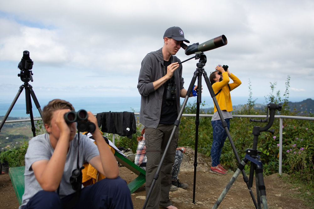 Counting and identifying raptors in streams close and far, using binoculars and scopes. Photo by Bart Hoekstra.