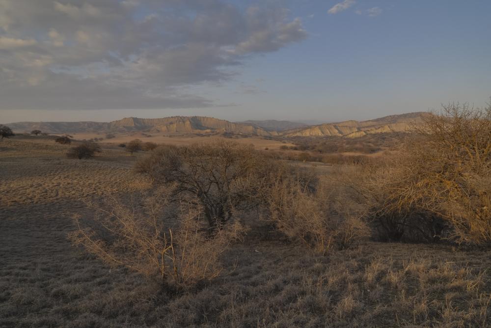 Stunning landscapes in Vashlovani NP (Hugh Jansman)