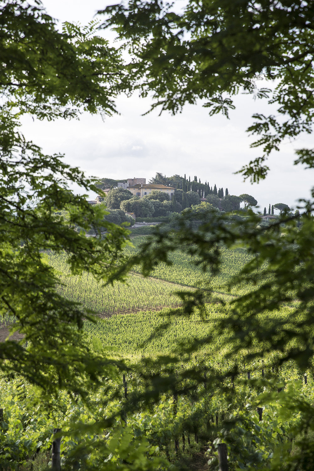 Tuscany Wellness Retreat