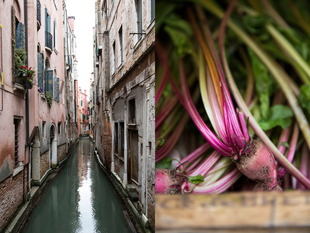 Venice Canal & Beets DPS .jpg