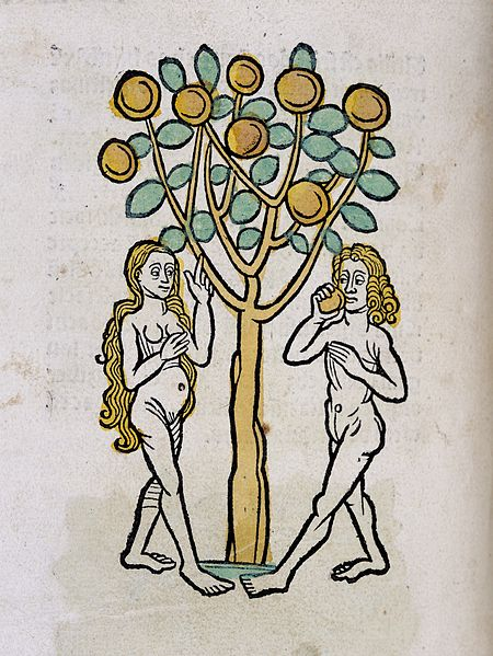 https://commons.wikimedia.org/wiki/File:Adam_and_Eve_under_the_Tree_of_life,_woodcut_1547_Wellcome_L0029215.jpg