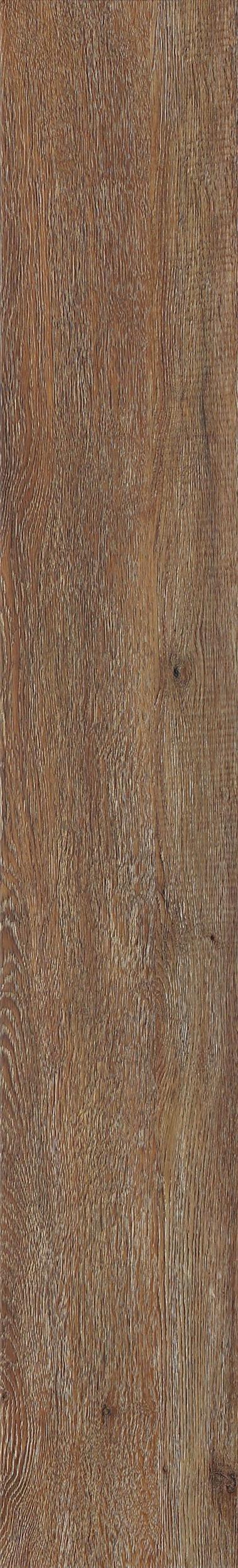 008 Umber Oak