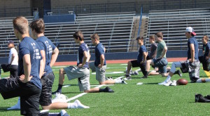 LOHS-knee-forward-300x165.jpg