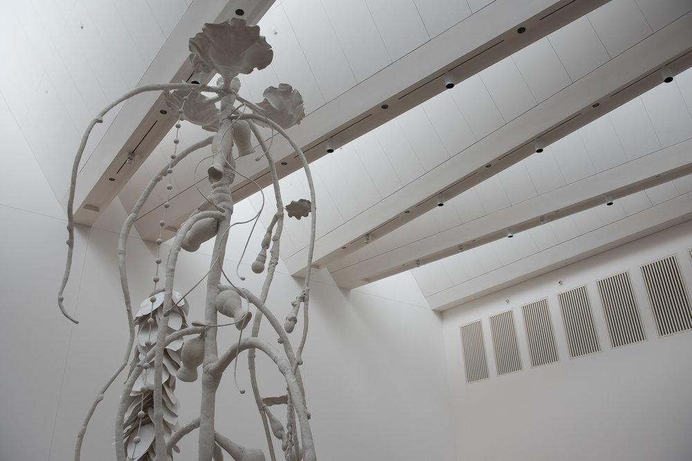 021917-SoundSpaceEarthworks-BlantonMuseum-008.jpg