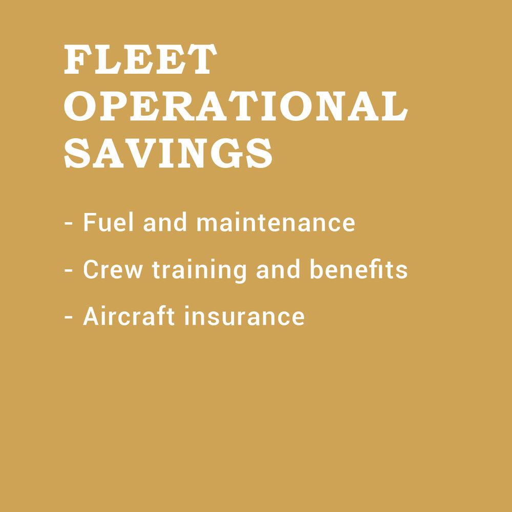 Fleet Operational.jpg