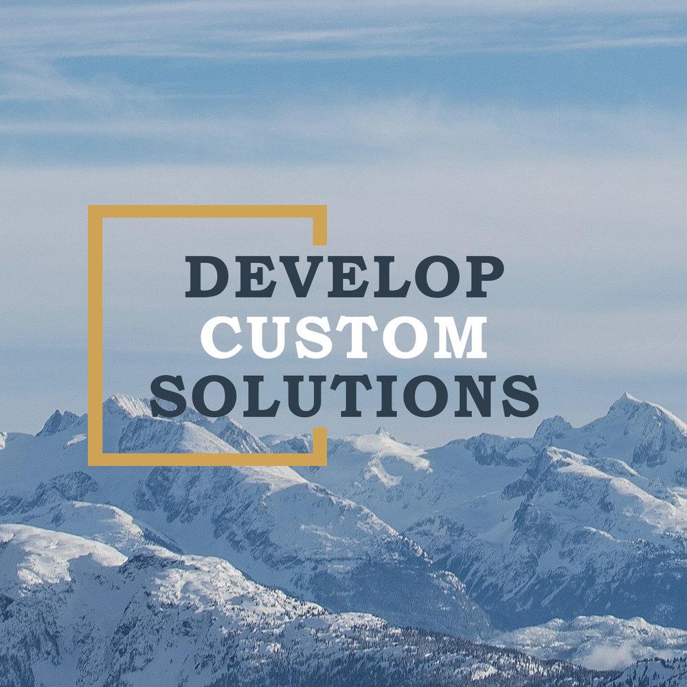 custom solutions 2.jpg