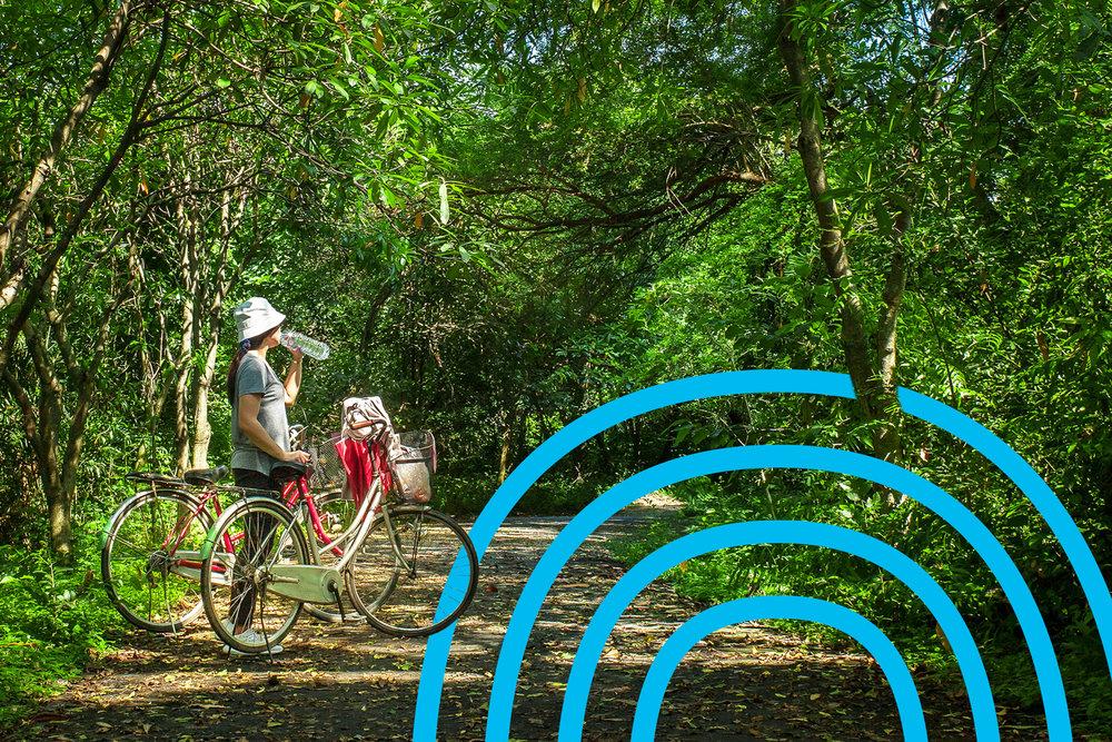 Bosque-ciclista.jpg