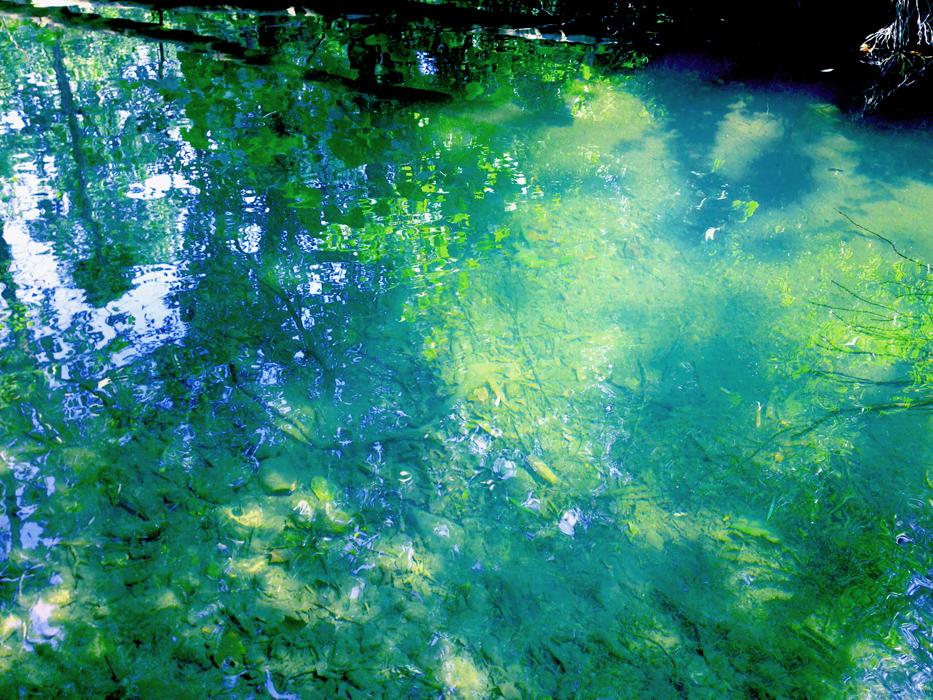 emeraldcreek5.jpg