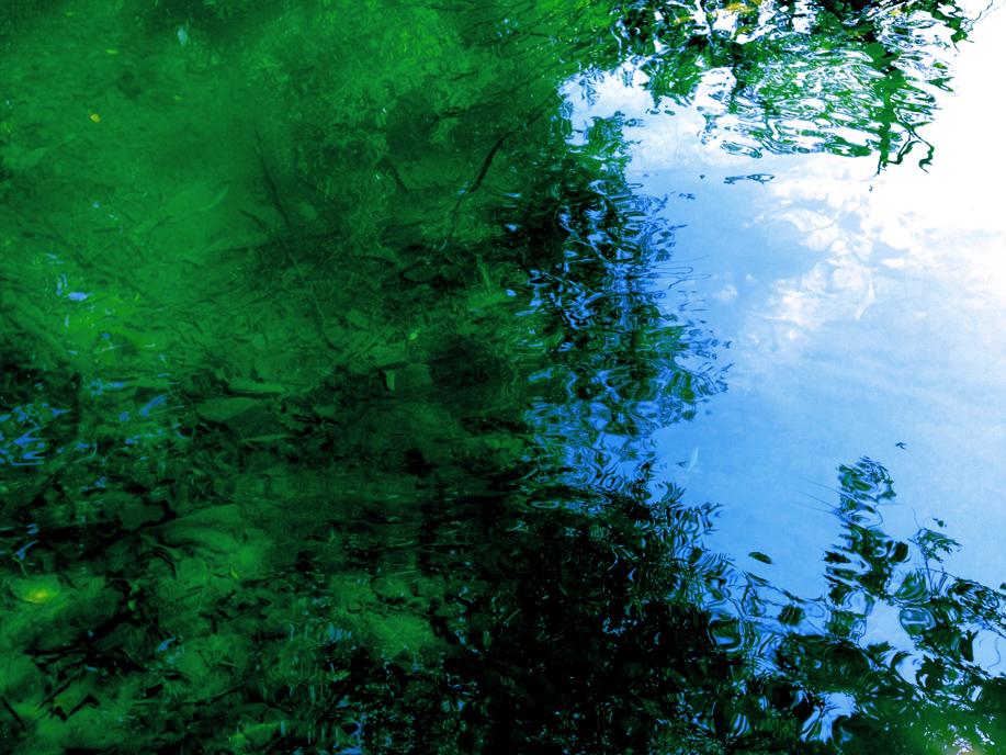 emeraldcreek6.jpg