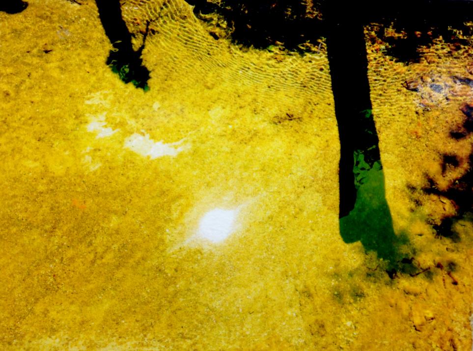 yellowsun.jpg