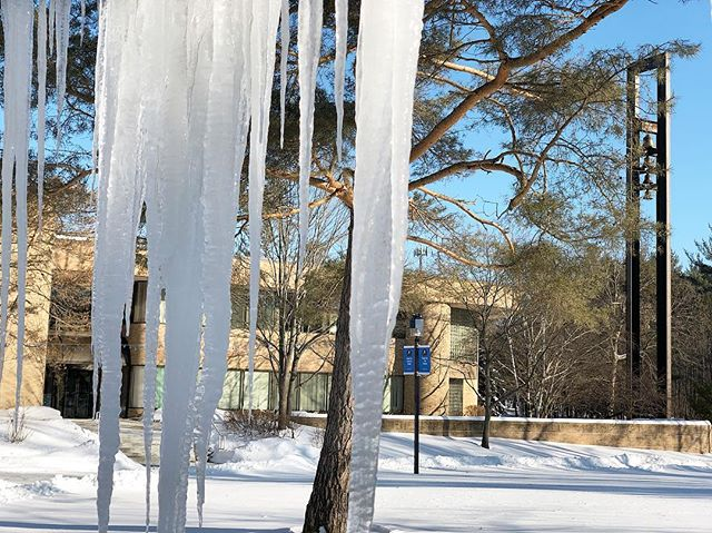 Happy first day of February❄️ #northwoodu