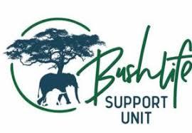 BSU Logo.jpeg