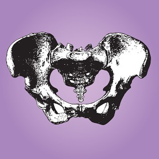 The Empowered Pelvis Six-Week Series @thebotanique starts Sept 10th. For information and to reserve your spot follow the link in bio!