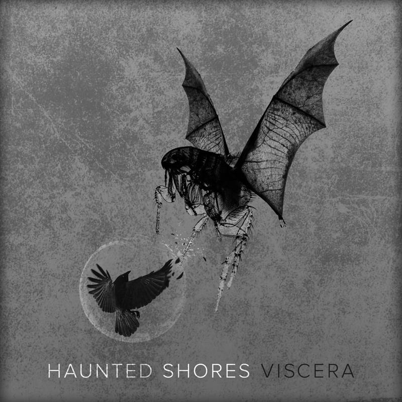 hauntedshores_cover_web.jpg