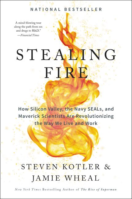 Stealing Fire  by Steven Kotler & Jamie Wheal