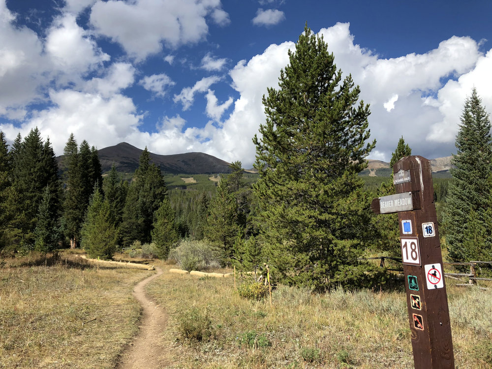 Whats your favorite trail around CCE? Ours is the Beaver Meadow - great views of the wetlands and Peak 8.