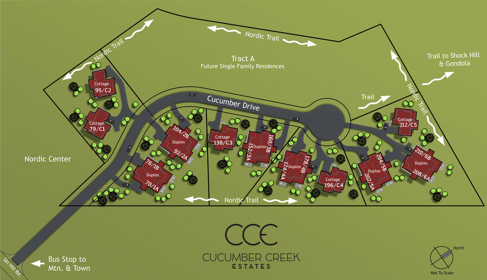 2018-6-CCE-Colored-Site-Plan-(B).jpg