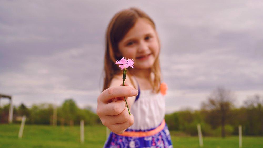 Fragrant blur-child-close-up-1027487.jpg