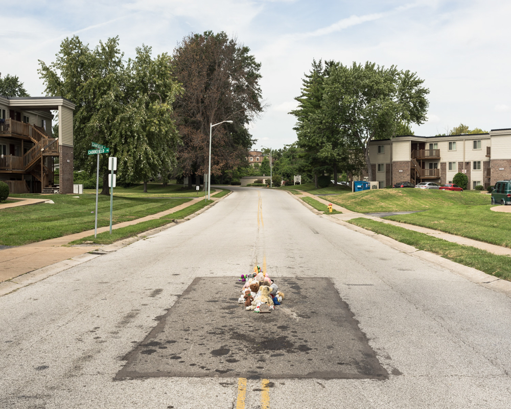 The Murder of Michael Brown, Ferguson, Missouri, 2016_Kris Graves.jpg