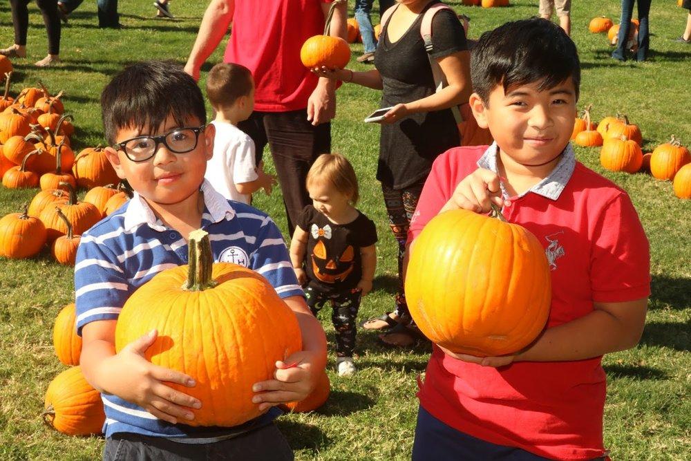 Pumpkin_Goolsby_oct-20 (55 of 213).jpg