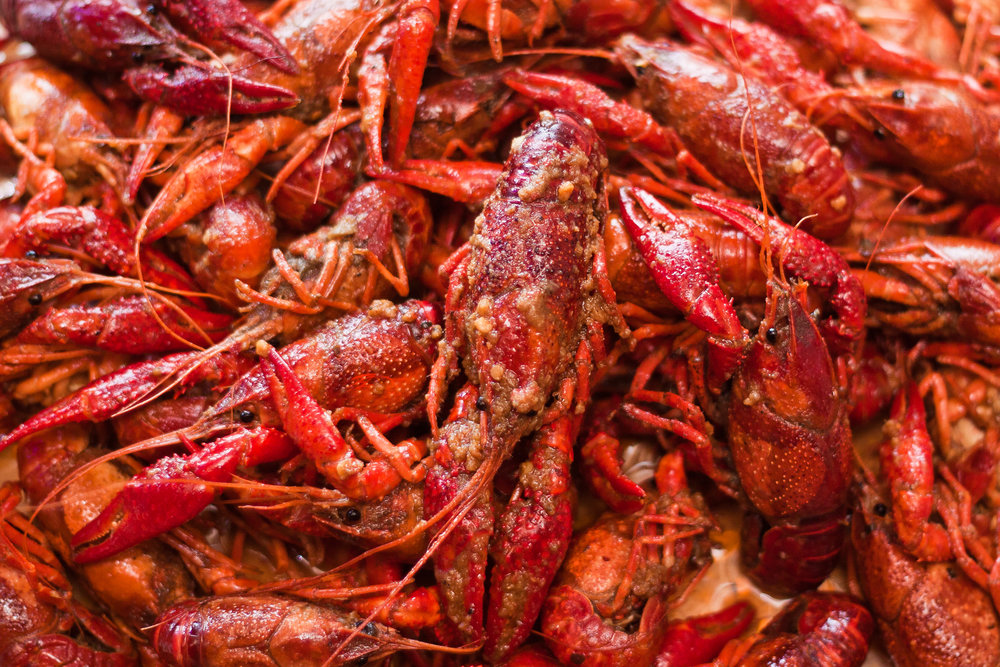 bucket-o-crawfish-145.jpg