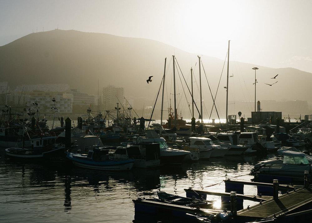 TenerifePort@2x.jpg