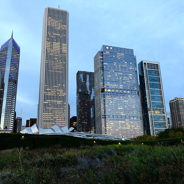 Millennium Park sets the base for the beautiful Chicago skyline lighting up the end of a perfect day.