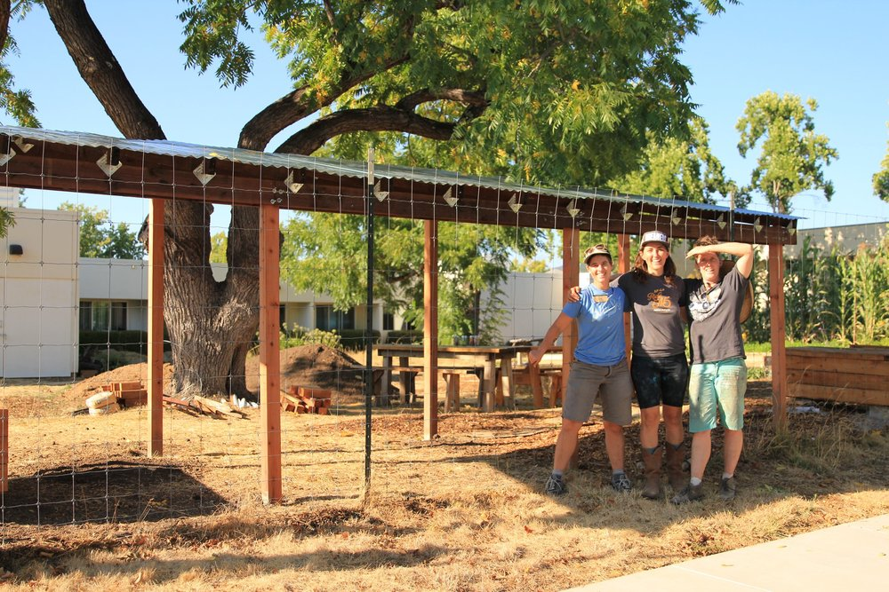 Garden Roof Community build with the Ceres Project in Santa Rosa, Ca. Read more about this project in our  What We've Been Up To Section