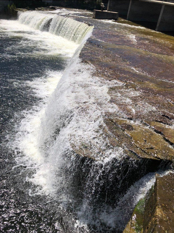 Pat Rose - Fenelon Falls.jpeg