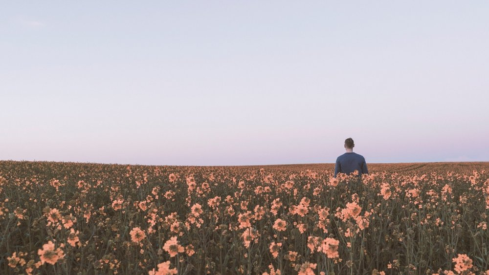 Man standing in a field of flowers_photo by daniel jensen.jpg