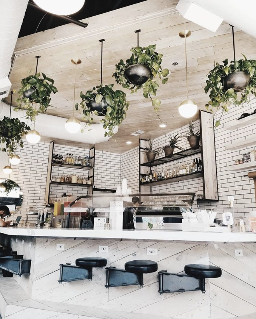 Tribal All Day Cafe - Lush greenery and clean minimalist design are definitely indicative of this Oak Cliff cafe's menu offerings. Bring your laptop and sip on some fresh juice in this greenhouse-inspired space.