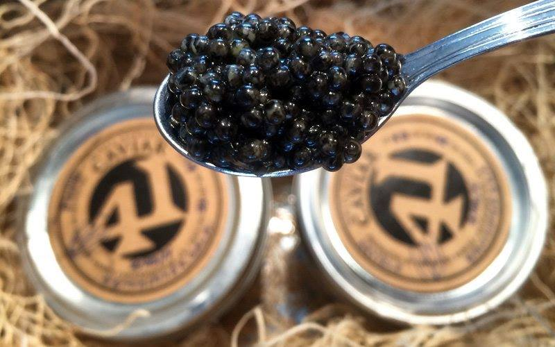 Caviar Dinner with John Tesar & Michael Passmore - Friday, January 11 | Knife Steakhouse Plano