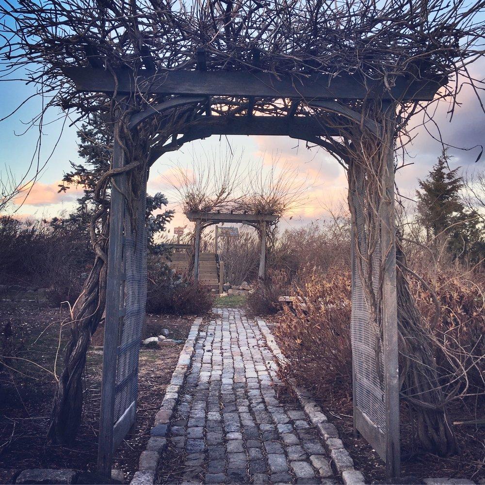 Gateway to Lido Preserve 12/9/2016 - Photo by Rich Nardo