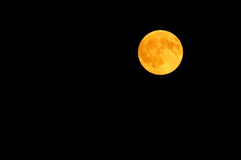 Harvest Moon (Long Beach)