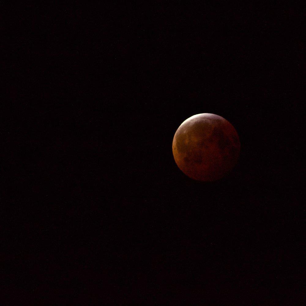 Super Wolf Blood Moon (012019)
