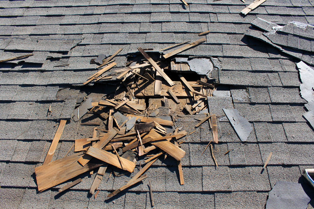 Debris   A branch on the roof may not seem like a big deal, but overtime it can rub the granules loose from your shingles, or may even be covering a crack that is caused as it landed. Luckily you can easily remove debris by hand or with a blower.