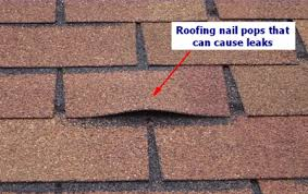 Loose Nail or Nail Head   A loose nail, located above the shingle, is typically a storm away from letting go completely.