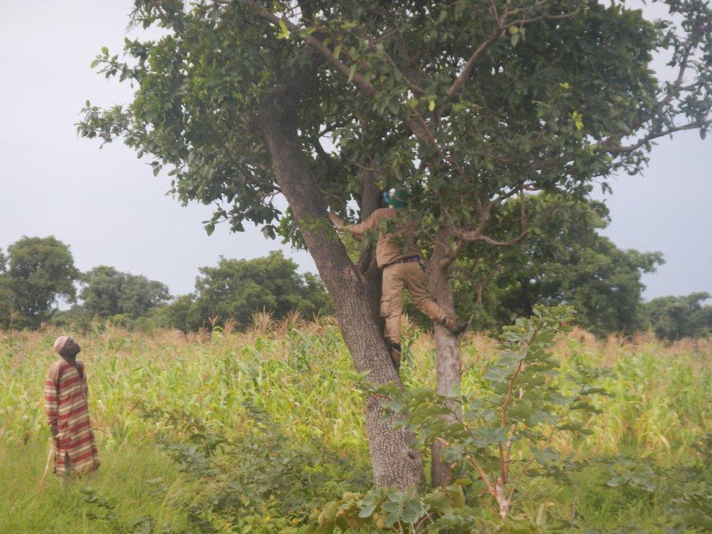 Relevant Benin Photos - 0350.jpg