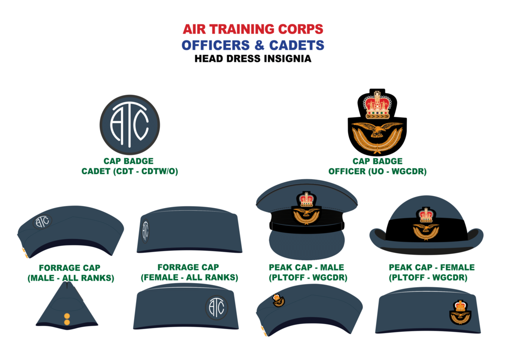 Head Dress Insignia