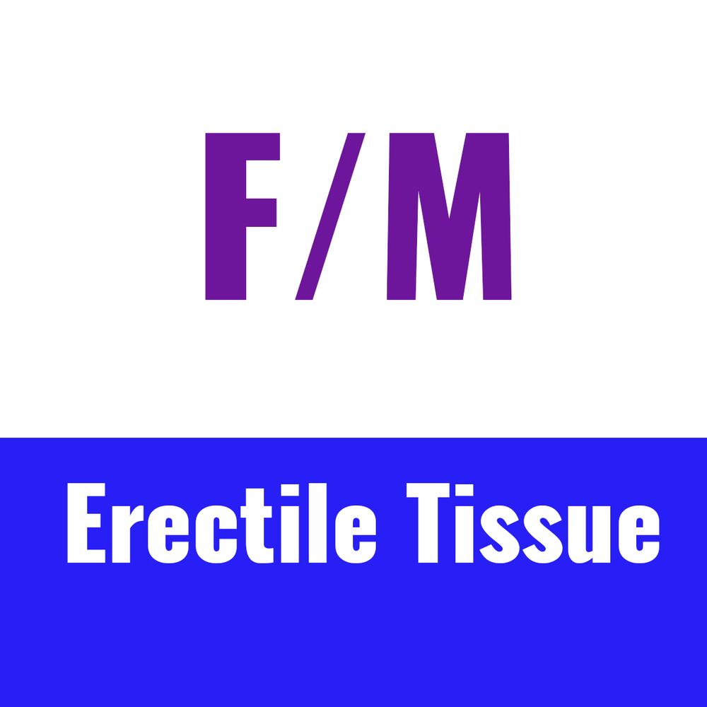 ERECTILE TISSUE thumbnails v2.png